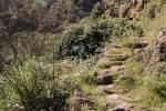 Le sentier pour Hermigua ; on voit l'antenne vers El Cedro en haut